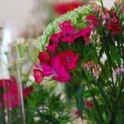 dieser eine tag Hochzeitsplanung Sparen bei Blumen 2